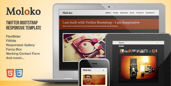 Moloko - Responsive One Page Html5 Template - Portfolio Creative