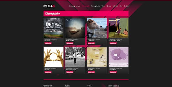 Jwplayer Website Templates from ThemeForest