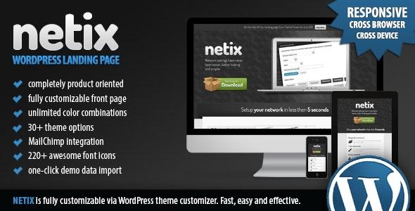 Netix - Responsive WordPress Landing Page - Software Technology