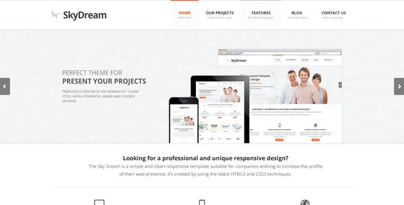 SkyDream - Premium PSD Template