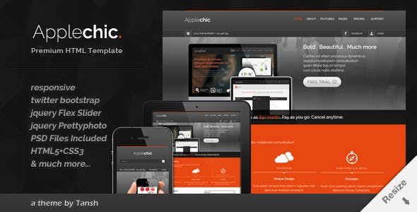 Applechic Responsive Software HTML Template