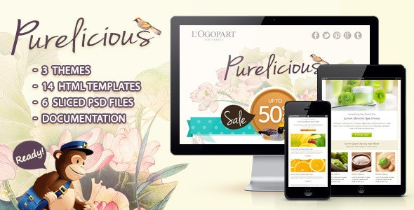 Purelicious Email Template - Email Templates Marketing
