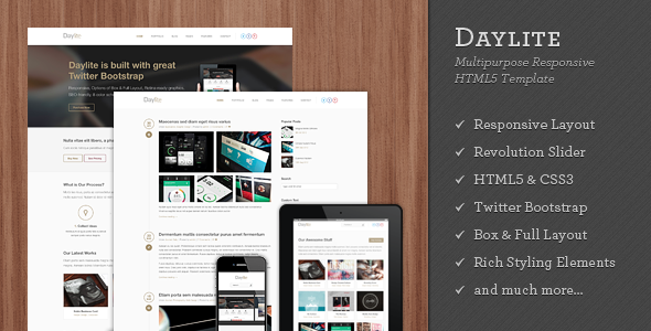 Daylite - Multipurpose Responsive HTML5 Template - Creative Site Templates