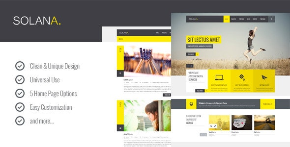 Solana – Multipurpose PSD Template - Corporate Photoshop