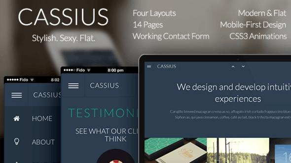 Cassius - Modern & Flat Multi-Purpose Template - Creative Site Templates