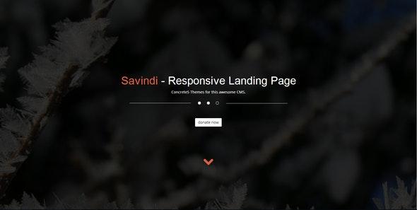 Savindi - Responsive Landing Page - Charity Nonprofit
