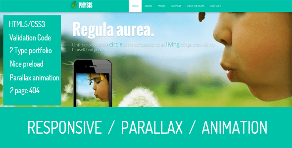 Physis -  One Page Responsive Template - Corporate Site Templates