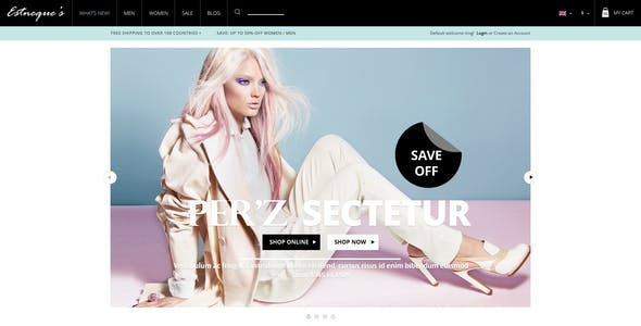 Responsive HTML Theme - Estneque