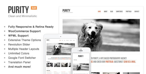 Purity: Responsive, Minimal & Bold WP Theme - Creative WordPress