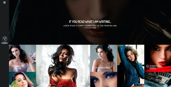 Cobra | Portfolio & Photography WordPess Theme