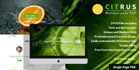 Citrus - OnePage Portfolio PSD Template - Corporate Photoshop
