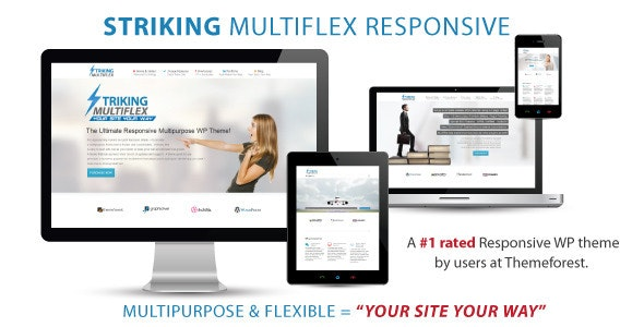 Striking - MultiFlex & Ecommerce Responsive WP Theme - Business Corporate