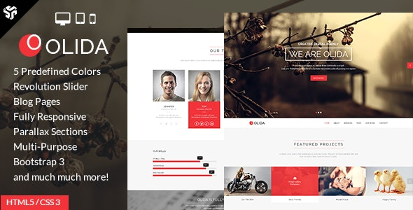 Olida | Responsive One Page Multi-Purpose Parallax - Creative Site Templates